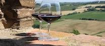 Wine Food Festival 2013: tutti a tavola con Coppa Piacentina, Tartufo, Sangiovese e Ortrugo