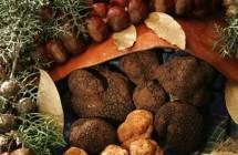 """Ottobre tra ciccioli """"balsamici"""" e tartufo nero al Wine Food Festival 2013"""