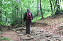 """Una App 3D per l'Alta Via dei Parchi  Turisti ed escursionisti verranno """"guidati"""" online"""