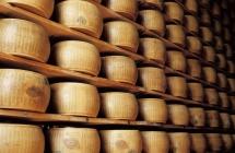 Dal Messico alla Cina la stampa internazionale esalta i prodotti DOP dell'Emilia Romagna