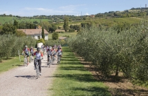 Un giornalista tedesco ed uno spagnolo in un biketour sulle strade di Pantani