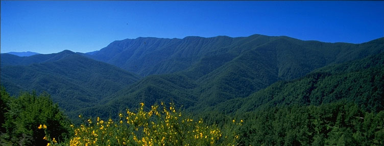Parco Foreste Casentinesi e Apt Servizi Emilia Romagna