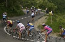 Venti promesse del ciclismo austriaco si allenano sulle colline Romagnole