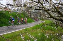 L'ex campione Hinault testimonial di un bike tour  che culminerà nella Gran Fondo del Sale di Cervia