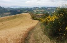 """Turismo slow: Emilia Romagna """"regina"""" dell'Atlante Nazionale dei Cammini"""