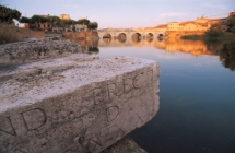 Buy Emilia Romagna, Rimini protagonista: Eductour con 14 tour operator mondiali