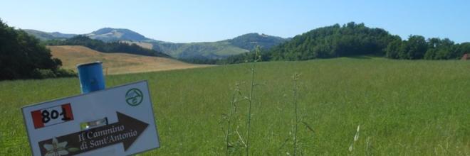 """Tutti in marcia """"I love Cammini Emilia Romagna"""" 12 passeggiate con la guida, gratuite, tra boschi e pievi"""