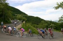 Alla Nove Colli 2019 quattro bike giornalisti tedeschi protagonisti di un Press Trip organizzato da Apt Servizi  e Terrabici