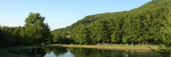 """La Giornata Verde dell'Emilia Romagna si moltiplica: tanti appuntamenti """"green"""" nei weekend fino all'autunno"""