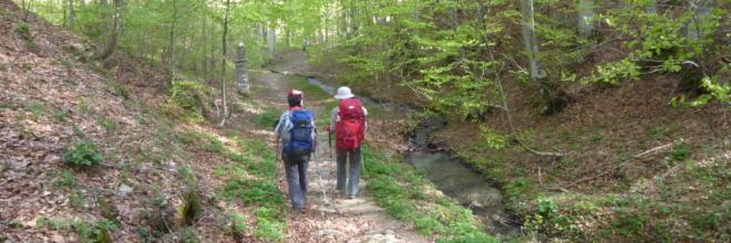 I Love Cammini Emilia-Romagna 2020 Esperienze guidate fra pievi, borghi e laghi di ninfee