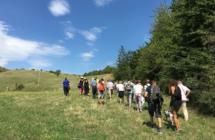 """In Emilia Romagna cultura fa rima con natura:  tante location """"green"""" per concerti, spettacoli e incontri"""