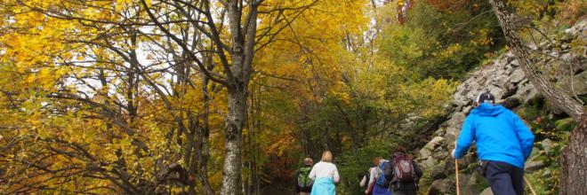 Foliage d'autunno nei boschi e parchi dell'Emilia Romagna:  turismo slow da scoprire a piedi, in bici e in treno
